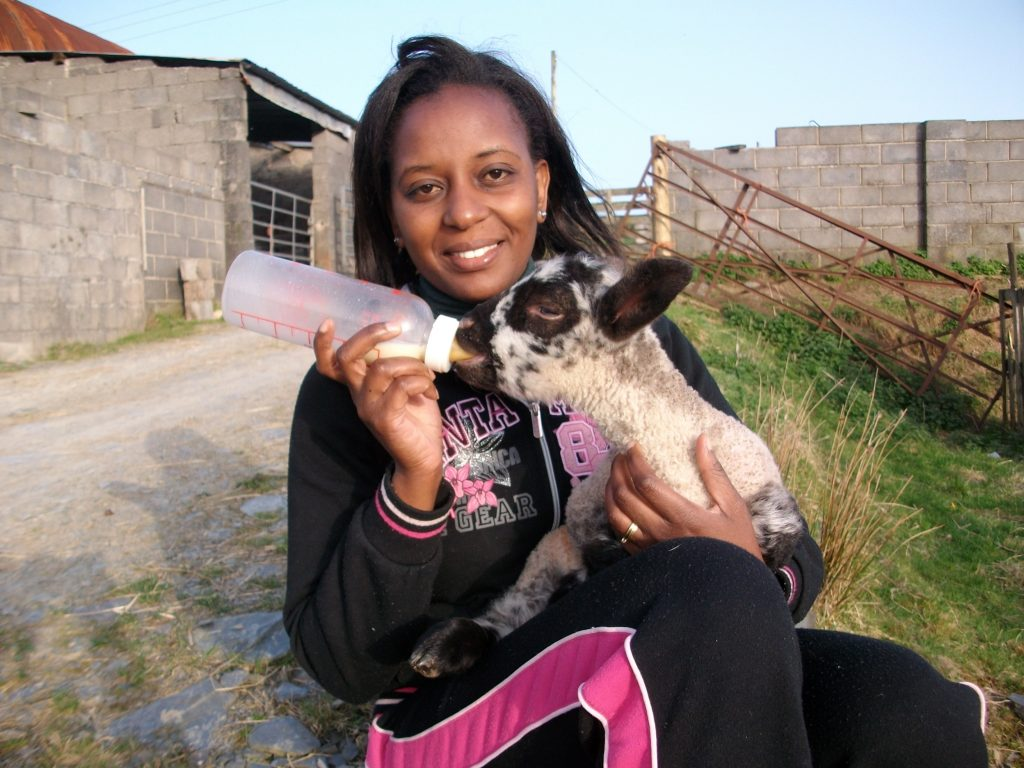 Judy bottle-feeding a lamb.