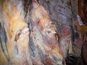 Our latest beef carcase hung in the chiller for 56 days. Inside it's dark red and full of flavour and tenderness.